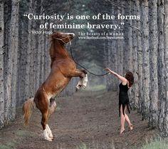 Curiousity... ~rwf