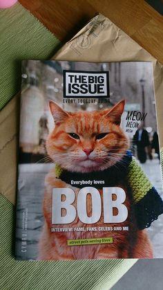 The famous Bob the Street Cat