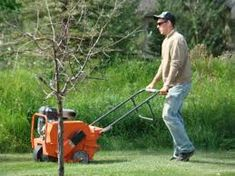 Lawn Care Tips Archives - Greener Grass