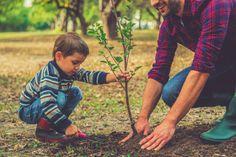 Be kind.. Prostřednictvím Ramissio Falcon nabízíme pomoc přesně tam, kde je třeba. Poskytujeme finanční podporu projektům a aktivitám, které jsou hodnotné a užitečné. Jsme laskaví a ohleduplní k lidem v našem okolí, k přírodě i ke zvířatům. Všichni jsme součástí této planety, jeden bez druhého nemůžeme existovat, proto si vážíme toho, co máme a vzájemně si pomáháme. Collaborative Divorce, Tree Day, Name Inspiration, Fast Growing Trees, Good Housekeeping, Save The Planet, Earth Day, Worlds Of Fun, Trees To Plant