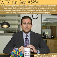 Why most managers are useless - WTF fun facts