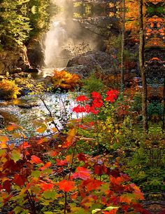 Dead River Falls, Marquette, Michigan (photo by Michael Bessler) Beautiful World, Beautiful Places, Beautiful Pictures, Autumn Scenery, All Nature, Nebraska, Wyoming, Puerto Rico, Natural Beauty