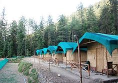 Camp Mashoobra Greens
