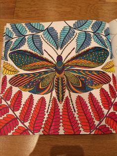 Butterfly Millie Marotta Adult colouring #adultcoloringbook #tropicalwonderland #MillieMarotta