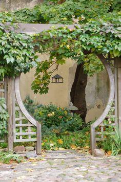 Garden ... Japan                                                                                                                                                                                 More