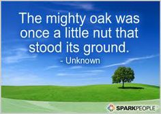 Discover and share Mighty Oak Tree Quotes. Explore our collection of motivational and famous quotes by authors you know and love. Favorite Quotes, Best Quotes, Famous Quotes, Unknown Picture, Tree Quotes, Mighty Oaks, Motivational Quotes, Inspirational Quotes, Spark People
