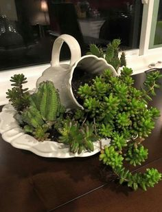 Old fashion pitcher/bowl arrangement #pitcher #and #bowl #with #succulents