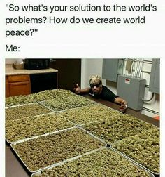 We like cannabis as you do :) We are proudly bringing you newest and most popular products infront of your door. Let´s enjoy canna life! Funny Weed Memes, Weed Jokes, 420 Memes, Weed Humor, Cannabis, Medical Marijuana, Ganja, Bob Marley, Smoking Weed