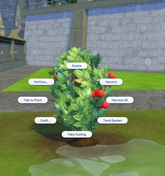 Mod The Sims - Harvestable Raspberry Plant