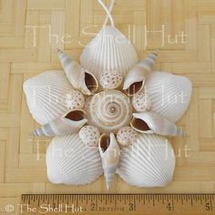 Seashell Flower Shell Christmas Ornament Wall Hanging Tropical Beach House 1 is part of Tropical Beach crafts - Seashell Christmas Ornaments, Beach Christmas, Snowman Ornaments, Seashell Art, Seashell Crafts, Crafts With Seashells, Starfish, Seashell Projects, Driftwood Projects