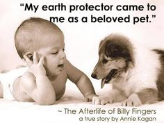 The Afterlife of Billy Fingers. Live Animals, All About Animals, Animal Rights Quotes, Laws Of Life, Everlasting Love, I Love Dogs, Cute Dogs, Puppy Love, Big Love