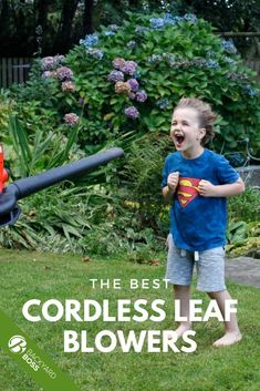 OK, so you probably don't have to rake the leaves with an actual rake. But it's true that they'll start falling soon, or have already, and you should be prepared to deal with them somehow. We've pulled together a list and ranked reviews of our favorite electric cordless leaf blowers and sweepers to help you keep your lawn tidy and walkway safe all autumn long.