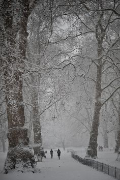St James Park in the snow, London