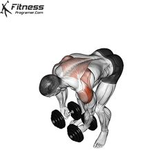Fitness Workouts, Gym Workouts For Men, Workout Routine For Men, Chest Workouts, Fit Board Workouts, Back Workout Men, Push Workout, Gym Workout Videos, Dumbbell Workout