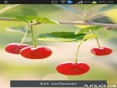 Sweet Cherry  Android App - playslack.com , Sweet cherry - juicy and aged cherry on the desktop of your smartphone or tablet PC. Live wallpapers act taps and are power saving.
