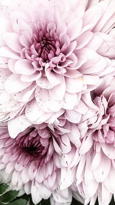 lustige Blumengesichter-Motive als 3D-Sticker der Serie MAGIC
