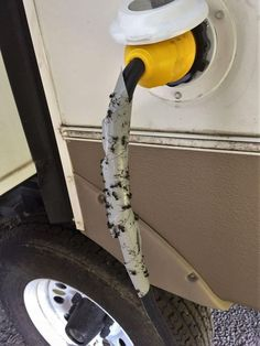 Ants trapped on the RV power cord - www.loveyourrv.co...