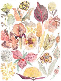 Botanicals No.3 Larger Archival print