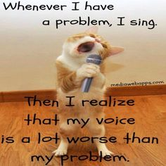 Whenever I have a problem, I sing. Then I realize that my voice is a lot worse than my problem.