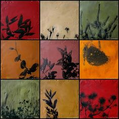 Visual Artists Street Team Gallery: Nature Squares ~ Encaustic and Photo Transfer