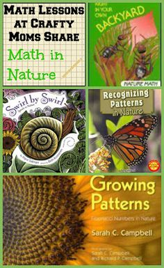 This shows different resources on how nature is beneficial to children's learning. This shows just how versatile learning in nature can be, and how you can fit in curriculum with playing outdoors. Math For Kids, Fun Math, Math Activities, Science Fun, Math Games, Science Experiments, Kids Fun, Homeschool Books, Math Books