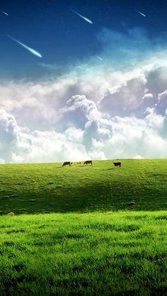 grassland, blue sky, white clouds, beautiful, meteor, hd, Nature