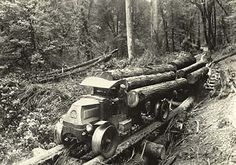 Hauling logs in Coos County circa 1925. (Coos County Historical Museum)