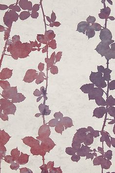 flutter+vines+purple+burgundy+wallpaper+leaves+foliage+wall+decor+cococozy+anthropologie.jpeg (410×615)