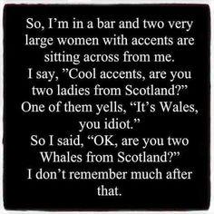 Funny Jokes To Make You LOL 👈🏻🍺😎😁👍 Hilarious Jokes & Humor - Clean Jokes, Dirty Jokes, Dad jokes & more. Funny As Hell, Stupid Funny, Haha Funny, Funny Stuff, Hilarious Memes, Funny Humor, Funny Irish Jokes, Stupid Jokes, Random Humor