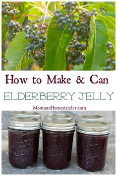How to make and can elderberry jelly- another great way to eat all natural Vitamin C to stay healthy during cold and flu season! All Natural Vitamins, Natural Vitamin C, Jelly Recipes, Jam Recipes, Canning Food Preservation, Preserving Food, Dried Berries, Canned Food Storage, Canning Tips