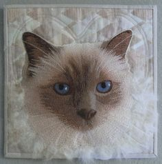 A Cat Named 'Baby' :   art quilt by Terry Aske. Photo imaging, fused applique, thread sketching, needle felting with cat fur