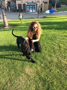 Tel Aviv Beach, Dogs, Animals, Animales, Animaux, Pet Dogs, Doggies, Animal, Animais