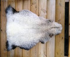Reading Chairs Sheepskin Rug Mother Nature Badger Welsh Mountains Nursery Rugs Face