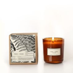 Fern + Moss Amber Glass Candle – Brooklyn Candle Studio