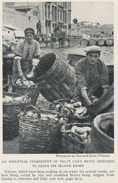 Candia port. 3 1929 Old Greek, Invisible Cities, Heraklion, Athens Greece, Crete, Cyprus, National Geographic, The Past, Italy