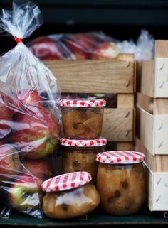 Flere æbler...... Æble chutney 1 kg æbler 2 fed hvidløg 5 cm ingefær skal og saft fra en citron 5 dl æblecidereddike 1 spsk hel koriand...