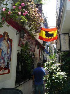 marbella, spain Andalucia Spain, Malaga Spain, The Beautiful Country, Beautiful Places, Spain Culture, Nerja, Marbella Spain, Puerto Banus, Spain And Portugal