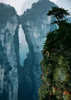 Travel Destinations You Won t Believe Are Real Places Zhangjiajie Stone Forest - China s Avatar Mountains. This has just been updated to my bucket list.Zhangjiajie Stone Forest - China s Avatar Mountains. This has just been updated to my bucket list. Zhangjiajie, Places To Travel, Places To See, Travel Destinations, Travel Stuff, Wonderful Places, Beautiful Places, Amazing Places, Guilin