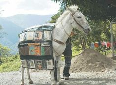 """The Donkey Book-Mobile in Venezuela"""" Not sure if this is a library or another way to . Little Free Libraries, Little Library, Mini Library, I Love Books, Good Books, Books To Read, Local Library, Library Books, Free Library"""