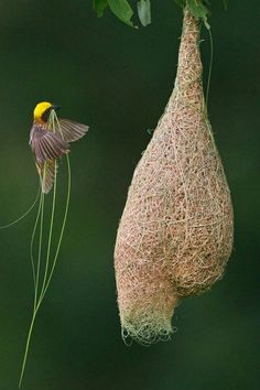 Amazing beautiful nature picture