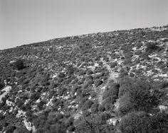 Hillside, Sicily - Jeff Wall.  Art Experience NYC  www.artexperiencenyc.com/social_login/?utm_source=pinterest_medium=pins_content=pinterest_pins_campaign=pinterest_initial