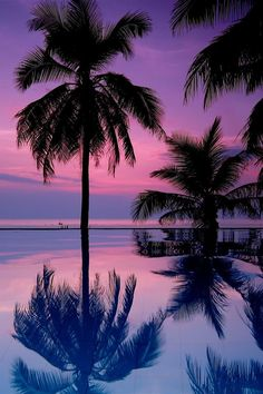 Purple Pink Sunset !