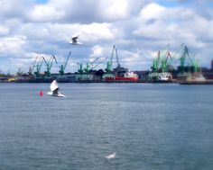 The Port in Klaipeda
