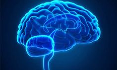 Let's take an in-depth look into #nootropics, which are also known as smart drugs, intelligence enhancers, neuro enhancers, cognitive enhancers, and #memoryenhancers.