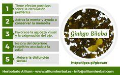 El #ginkgo biloba mejora los trastornos #circulatorios, activa la mente y ayuda a conservar la #memoria. Tiene efectos positivos sobre las funciones cerebrales y circulación periférica.
