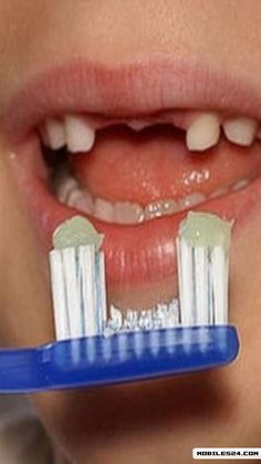 Funny Toothbrush -one