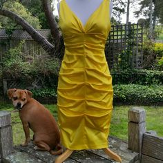 Lemon Yellow Traffic Stopper Sleeveless All around ruching  Self bra Sexy ...dog not included xcape  Dresses Midi