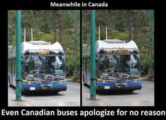24 Memes in Real Life Meanwhile in Canadian Memes, Canadian Things, I Am Canadian, Canadian Humour, Canada Jokes, Canada Funny, Canada Tumblr, Meanwhile In Canada, Moving To Canada