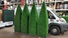 $395 Each | Plant Rentals in New York City - Interior Foliage Design