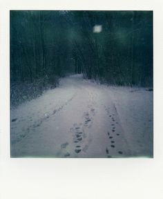 when it was snowing - Impossible Project instant film, PX680, winter, Ter Apel, The Netherlands